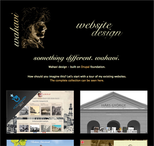 Wahavi, Website design